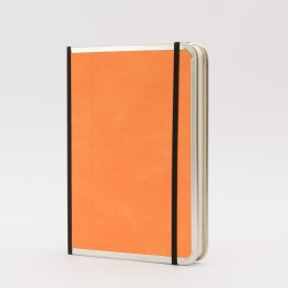 Diary BASIC COLOUR orange | 17 x 24 cm,  1 week/double page