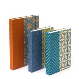 Notebook ALMA