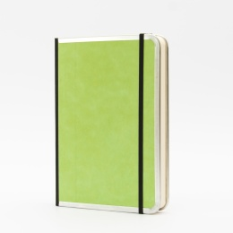Notebook BASIC COLOUR green | A 5, 144 sheet blank